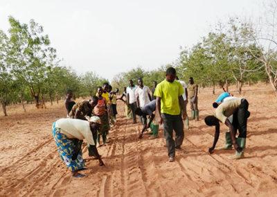 luttre-contre-desertification-min